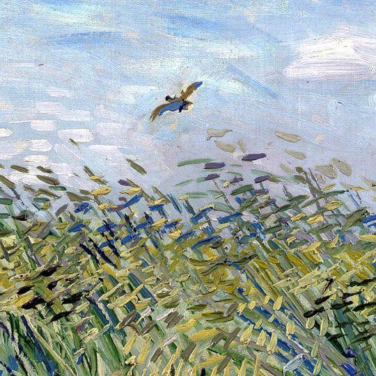 Alouette volant dans champ-Van Gogh