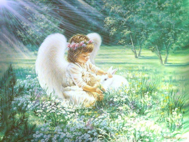 Ange-enfant dans l'herbe