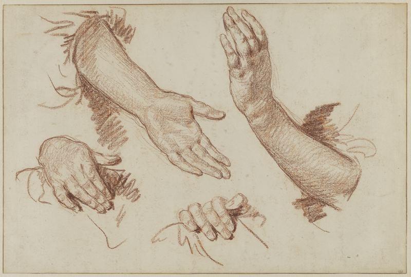 Bras et mains