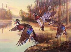 Canards sauvages-Peinture