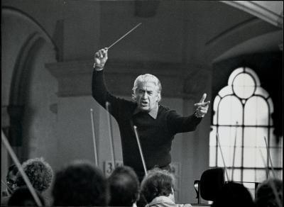 Maestro Celibidache