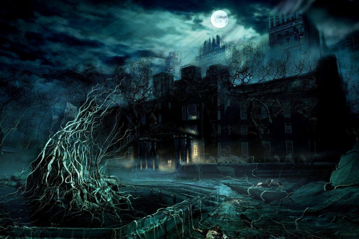 Château dans l'ombre nature