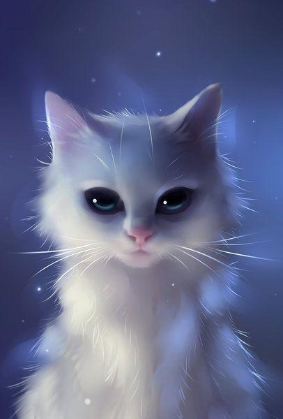 Chat blanc assis