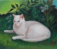 Chat blanc couché