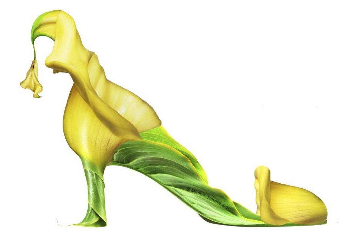 Chaussure jaune verte fantastique
