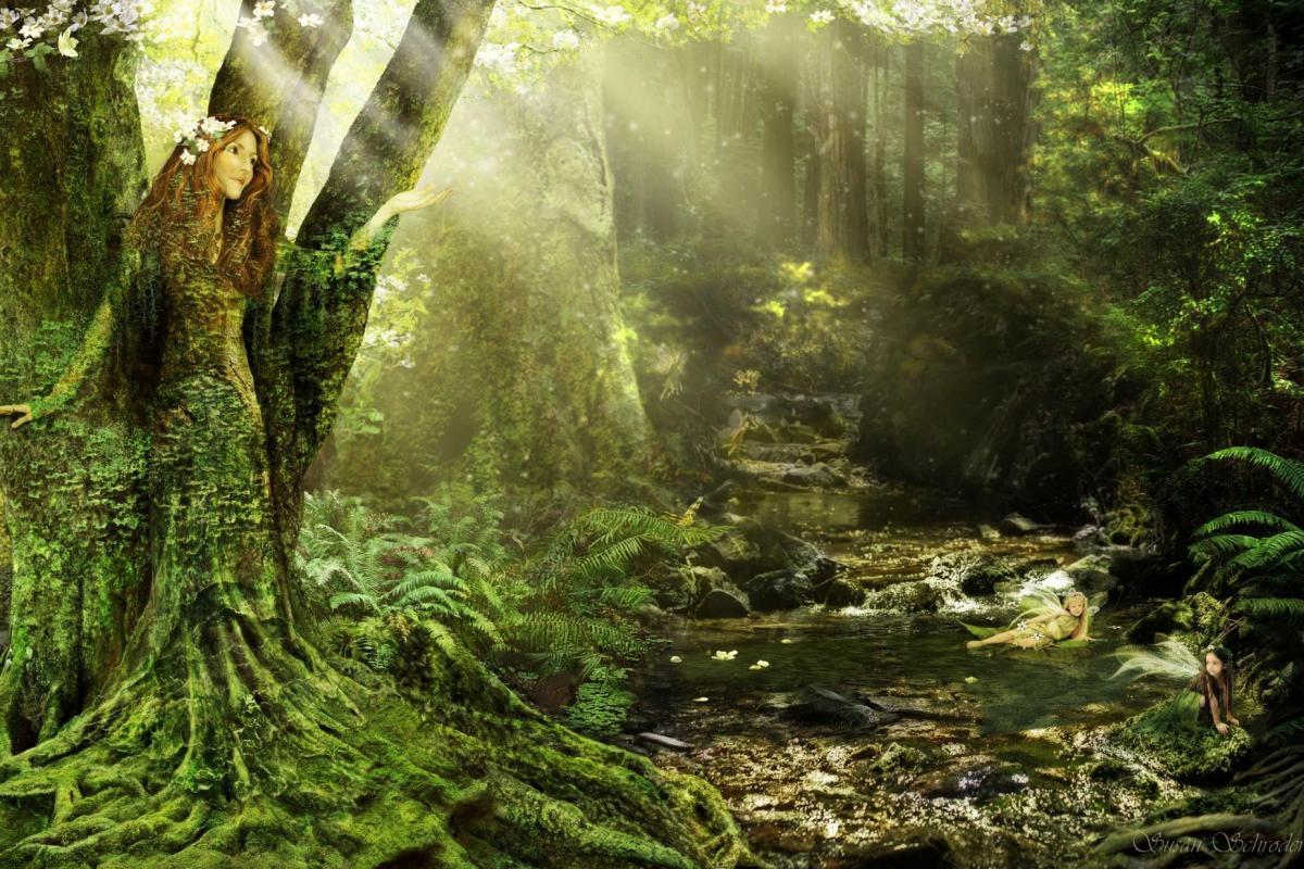 Dryade-arbre-atys