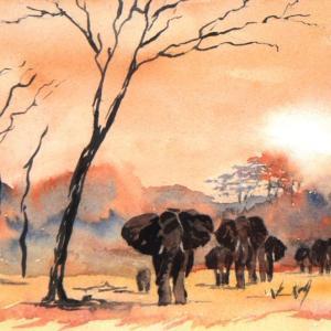 Eléphants