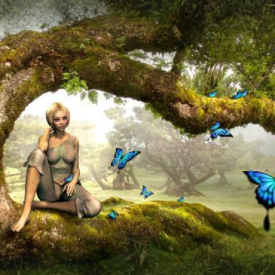 Fée sur arbre oiseaux bleus
