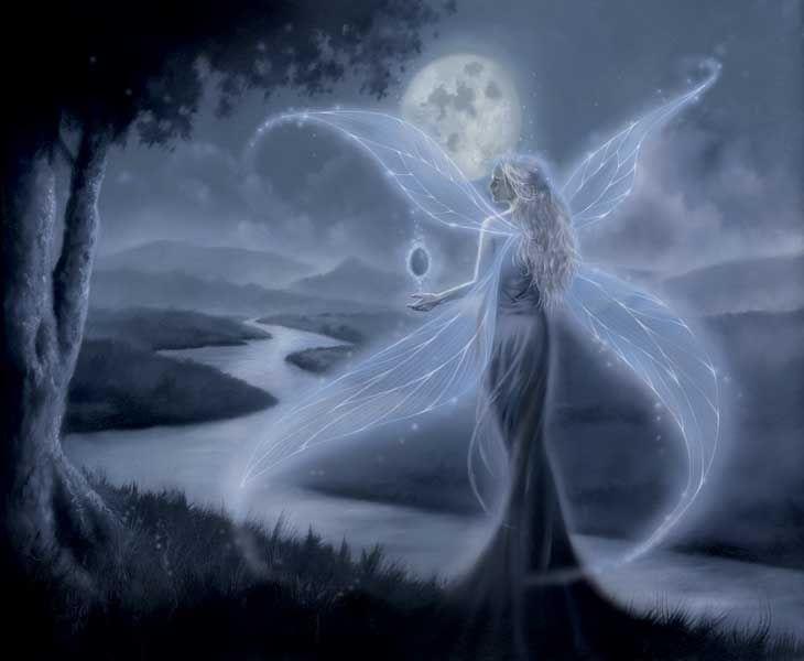 Femme ailes d'argent dans nuit