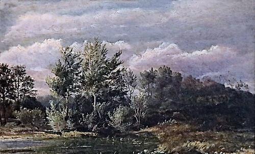Forêt grise-Dankwart Dreyers