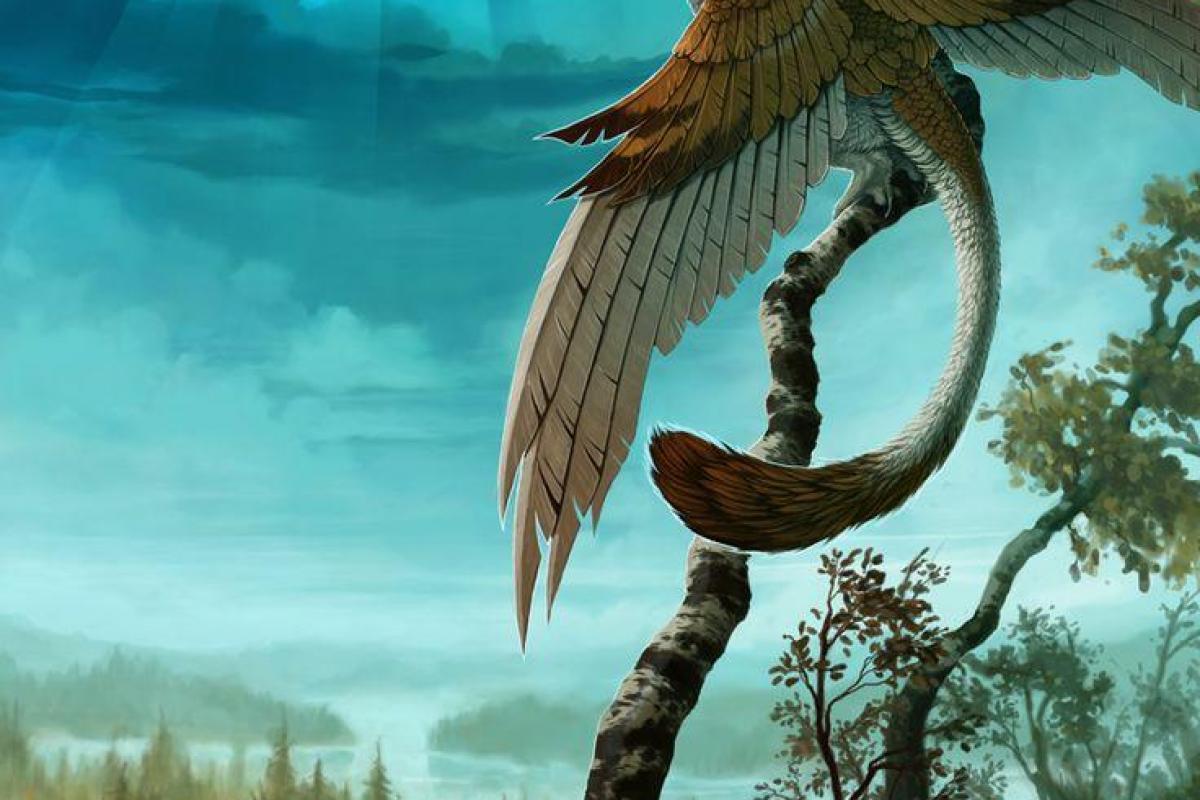 Griffon perché sur arbre