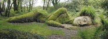 Homme sauvage couché à terre