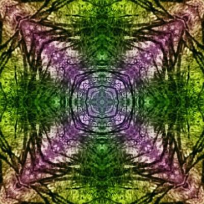 Mandala au coeur de forêt