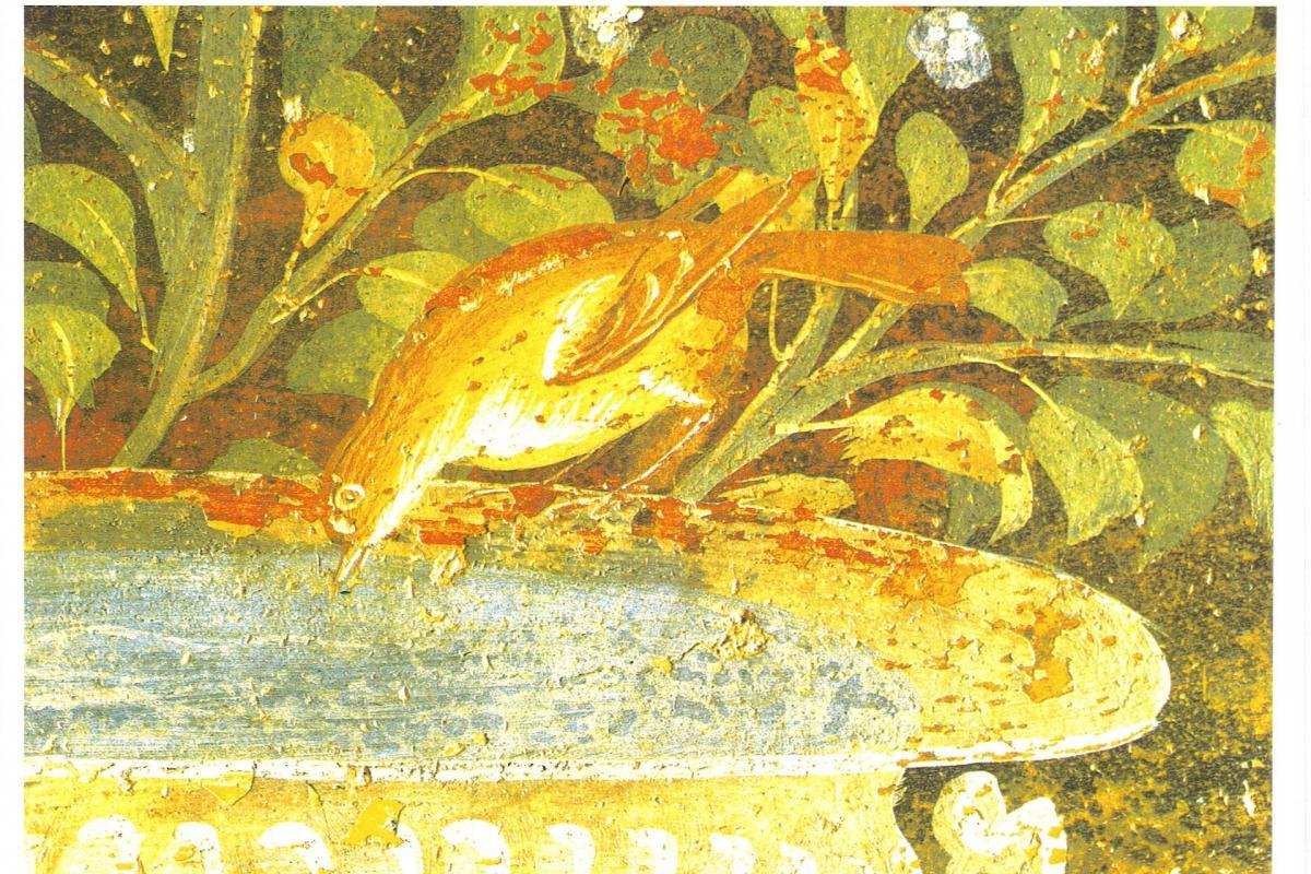 Oiseau buvant à la fontaine d'or