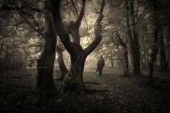Ombre d'homme dans forêt nocturne