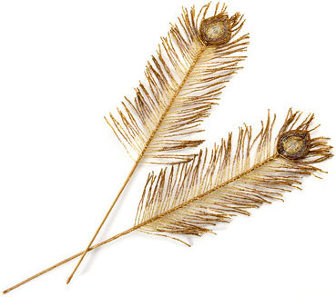 Plumes d'or