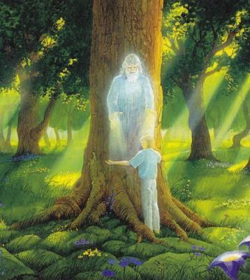 Rencontre avec l'arbre-homme