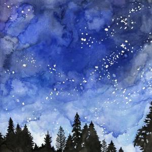 Sapin dans nuit bleue