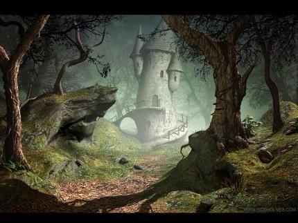 Tour dans la forêt